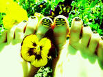 Bee Toes :D