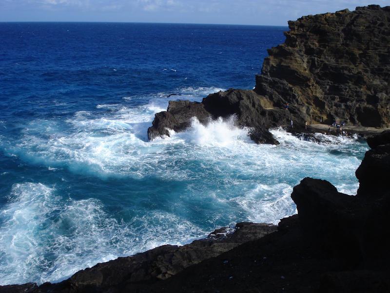Hawaii Blue by iluvhorsez-25