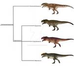 Carcharodontosaurinae Cladogram