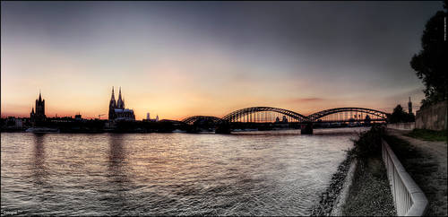 Cologne .four