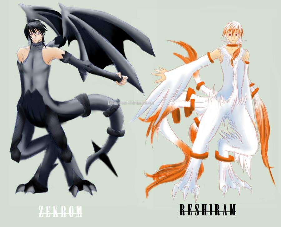 Pokemon Zekrom Human Images | Pokemon Images