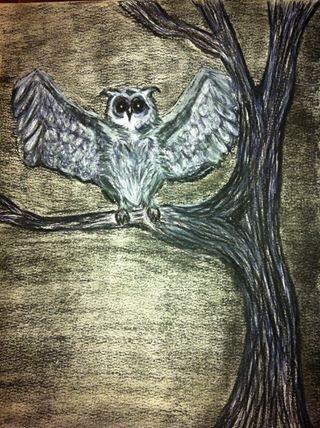 Dating night owls