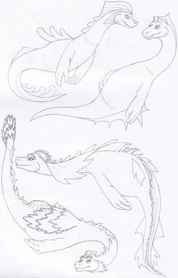 Experimental Nessie Designs