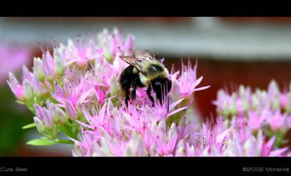 Cute Bee by Moriendii