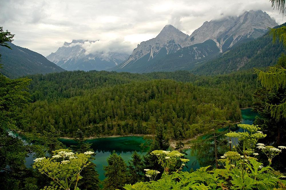 Looking into Austria by Dee-ehn