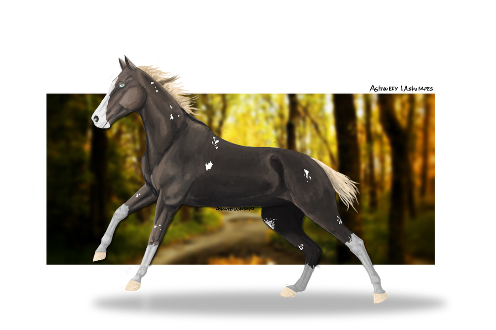 Aeroa: My Mascot Horse/ Charechter Horse by Astusapes