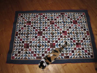 Mr Quilty's Quilt