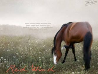Red Wind by Moony-bean