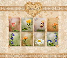 Backgrounds  Floral 01 by flaviacabral