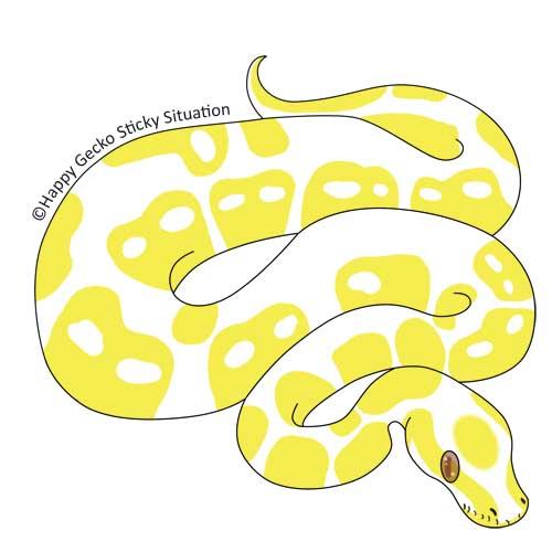Albino Ball Python by beachgecko on DeviantArt