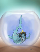 Shark Mermaid in Fishbowl