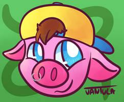 CO: Piggy