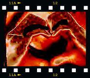 photo my heart by reignbeau