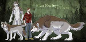 Bran Norington
