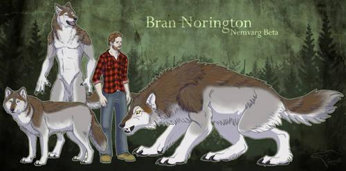 Bran Norington by SageKorppi