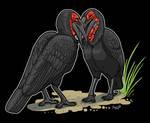 Hornbill Hugs