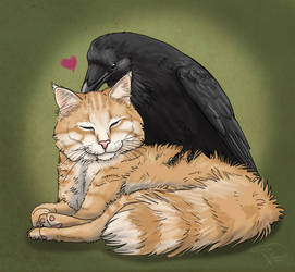 Bird Loves Cat