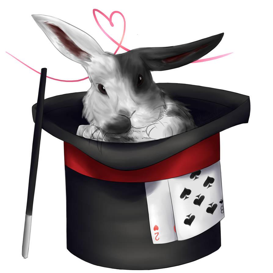 RQT   Magic Bunny by Koogers17