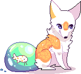 Koi by silly-boat