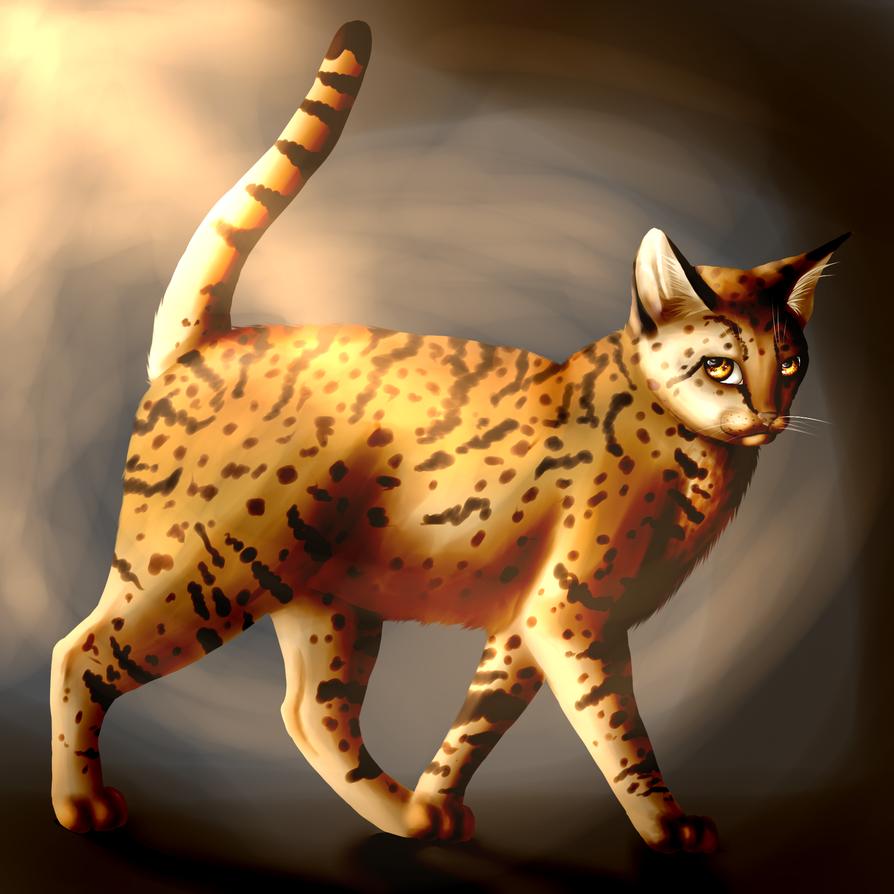 Leopardstar by BlackLightning95