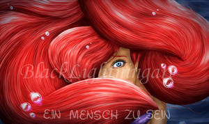 Arielle poster raffle by BlackLightning95