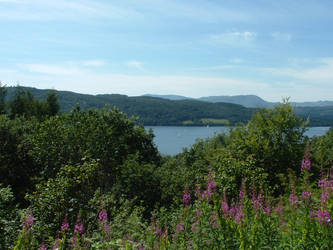 lake district - on a good day by noirin