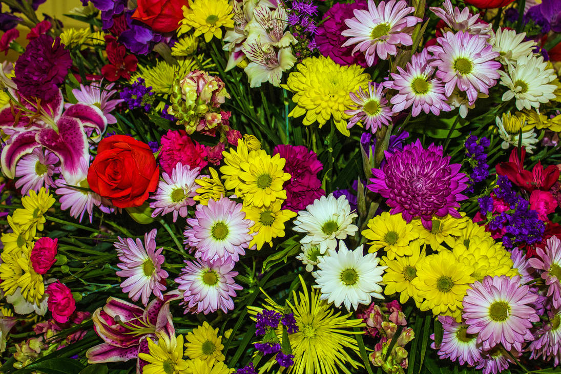 grand bouquet by ChasMandala