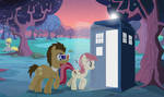 The Doctor's Companion..