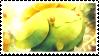 Skiploom stamp