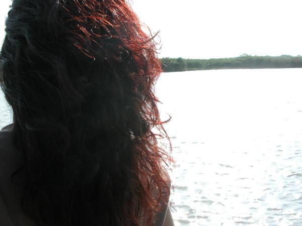 jayshree's Profile Picture