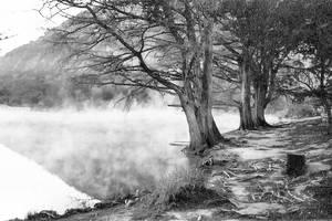 Fog rollin in B and W by jayshree