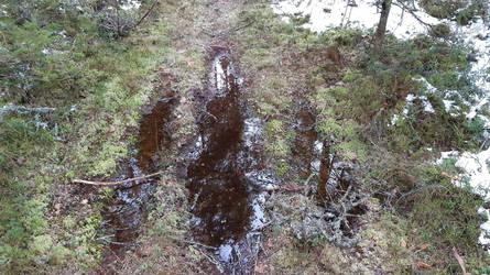 Footprint-shaped puddles