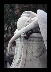 my beloved angel by LunaInvicta