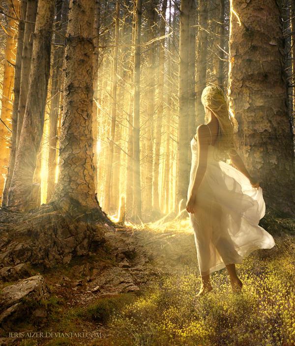 Golden dawn by Ieris-Aizer