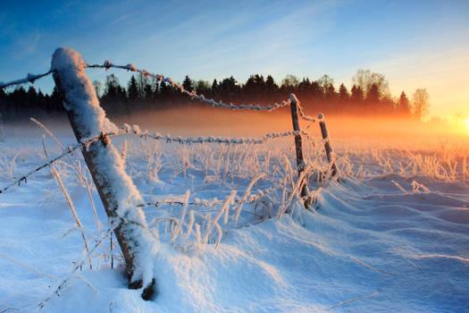 Warm cold winter sunset