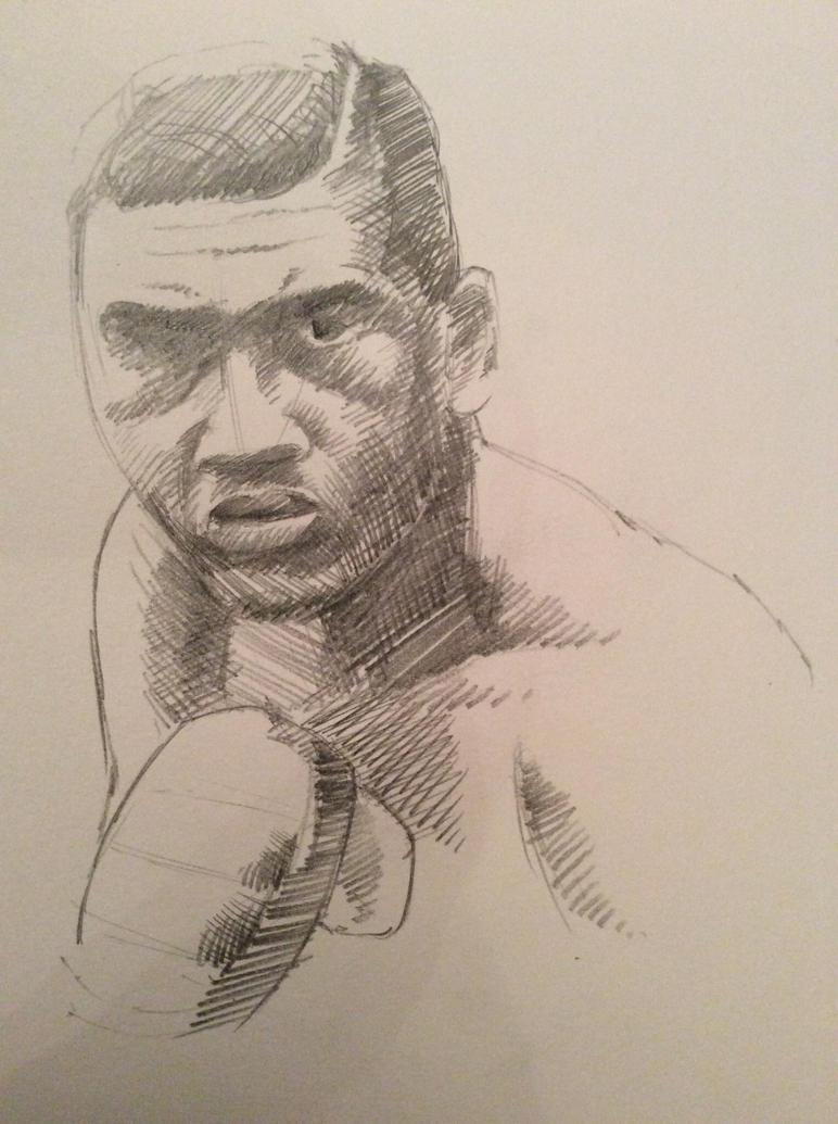 Boxer by JeremyWDunn