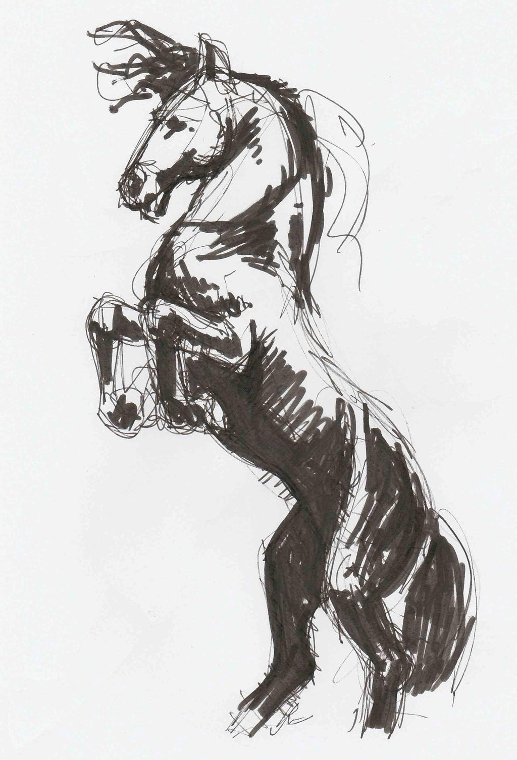 Speedy horse by JeremyWDunn