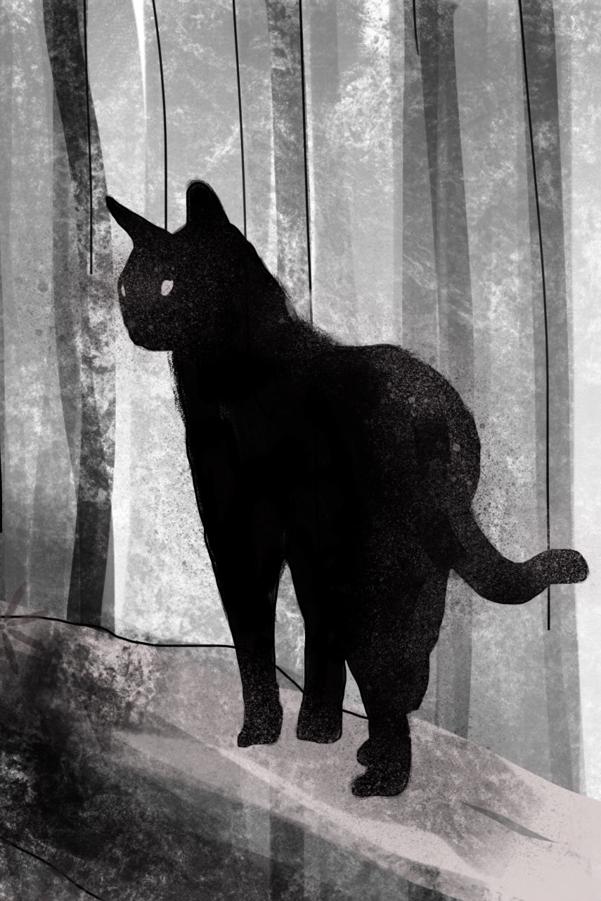 cat by JeremyWDunn