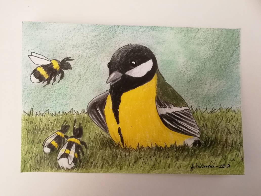The great tit and the bumblebees by CurrentlyLoading