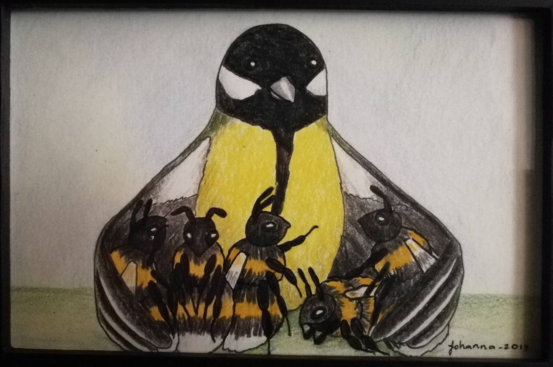 Great tit the teacher and the bumblebees by CurrentlyLoading