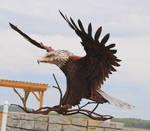 Steel Eagle 5