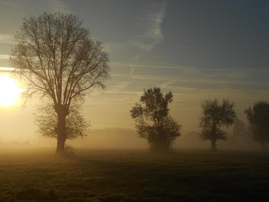 Winter sunrise by AshesOfTheDay