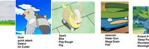 My Temperary Pokemon Shield Team