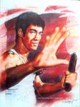 Bruce Lee the ultimate fighter