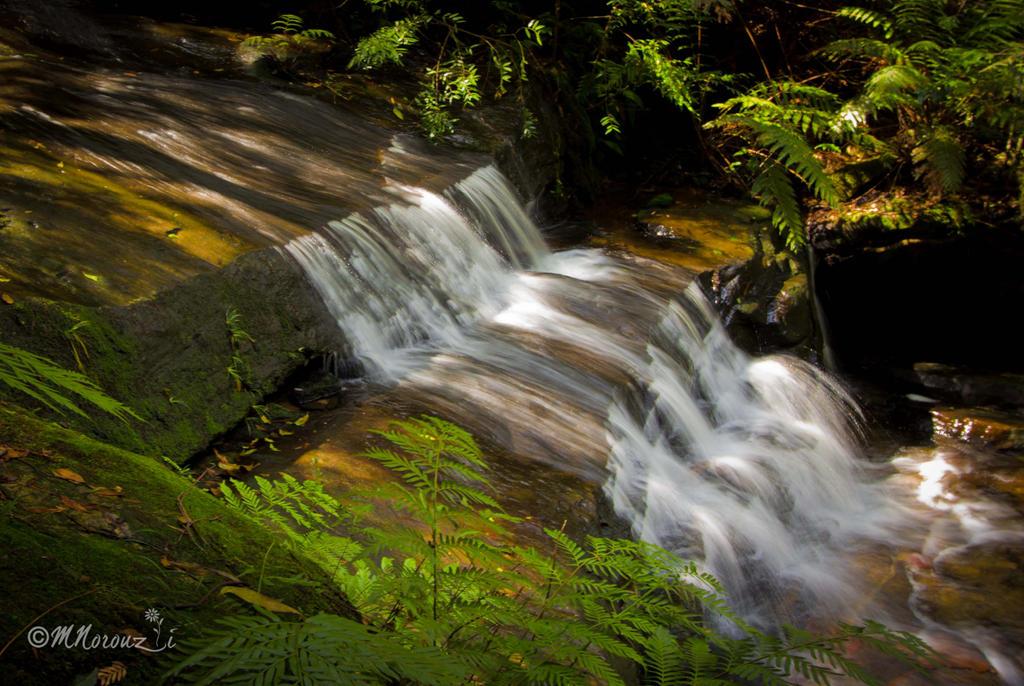 Wentworth Falls by mnoruzi