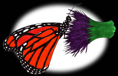 Monarch Butterfly by AngelicAdonis