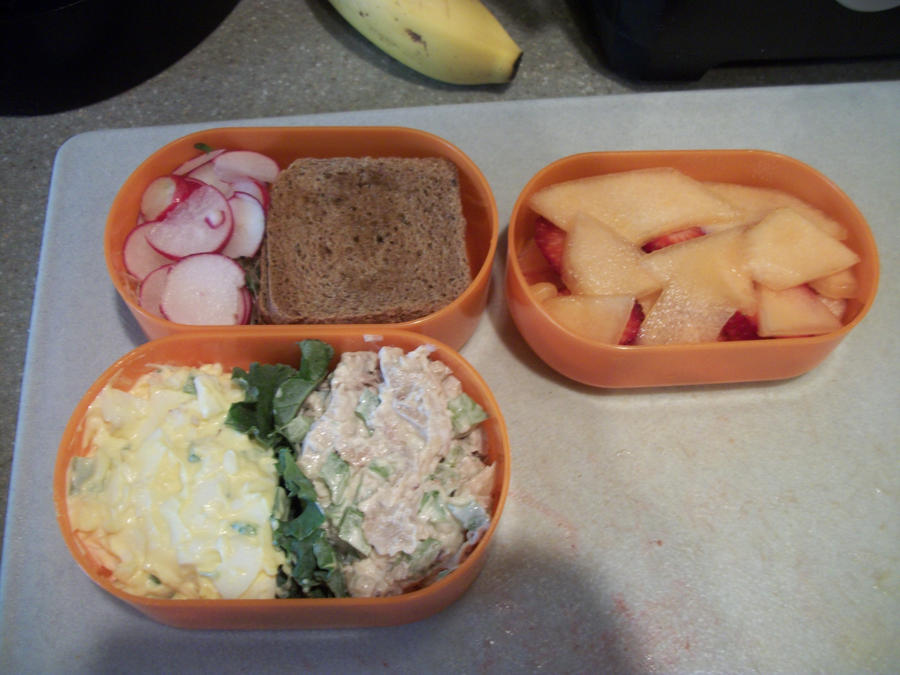 6/19/2012 bento by HarvesterofPearls