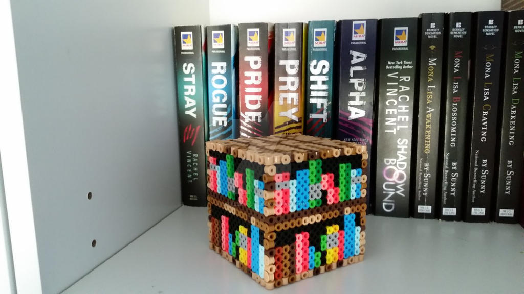 3D Minecraft Bookshelf By LittleKhajiit
