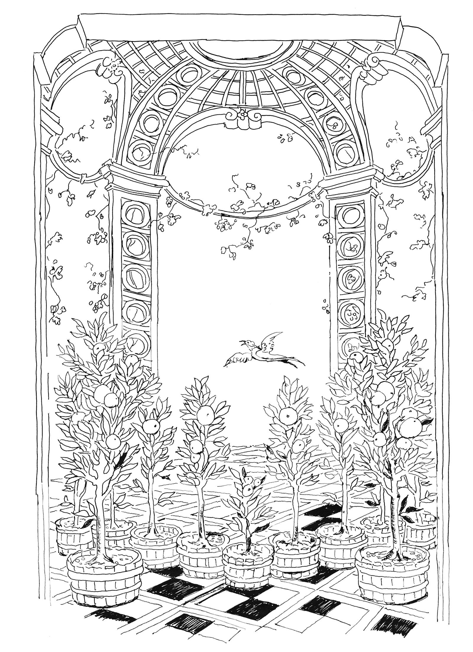 Pippa Rossi Lost Garden Adult Coloring Book Orange By