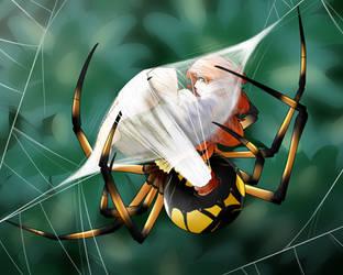 Bundled up Tight by spiderweber